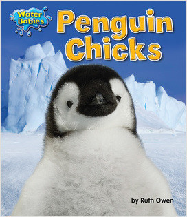 Cover: Penguin Chicks
