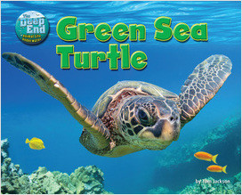 Cover: Green Sea Turtle