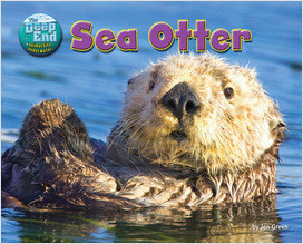 Cover: Sea Otter