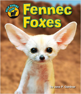 Cover: Fennec Foxes
