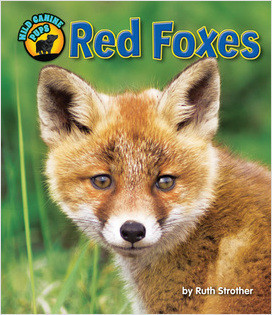 Cover: Red Foxes