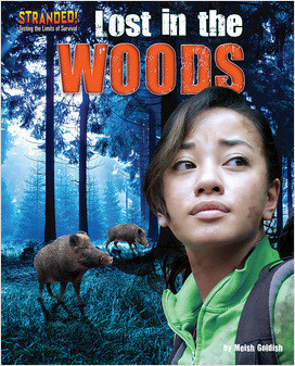 Cover: Lost in the Woods