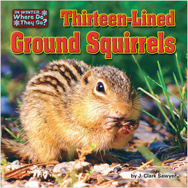 Cover: Thirteen-Lined Ground Squirrels