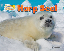 Cover: Harp Seal