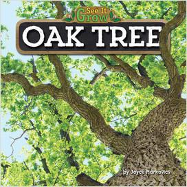 Cover: Oak Tree