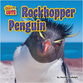 Cover: Rockhopper Penguin