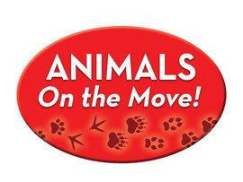 Cover: Animals On the Move!