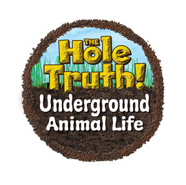 Cover: The Hole Truth: Animal Life Underground