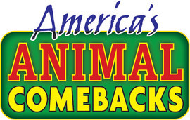 Cover: America's Animal Comebacks