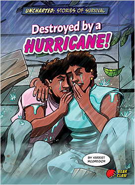 Cover: Destroyed by a Hurricane!