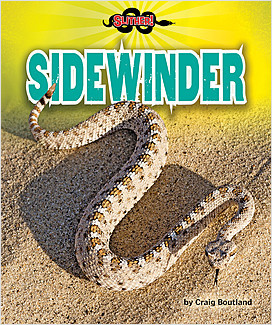 Cover: Sidewinder