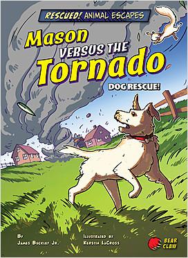 Cover: Mason versus the Tornado