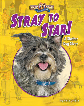 Cover: Stray to Star!