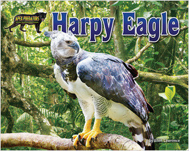 Cover: Harpy Eagle