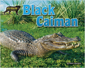 Cover: Black Caiman