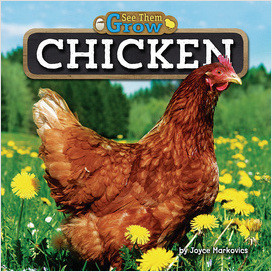 Cover: Chicken