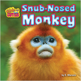 Cover: Snub-Nosed Monkey