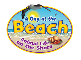 Cover: A Day at the Beach: Animal Life on the Shore
