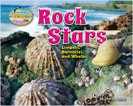 Cover: Rock Stars