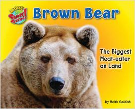 Cover: Brown Bear