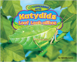 Cover: Katydids
