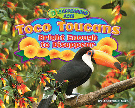 Cover: Toco Toucans: Bright Enough to Disappear