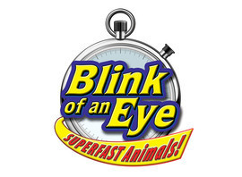 Cover: Blink of an Eye: Superfast Animals
