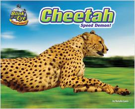 Cover: Cheetah