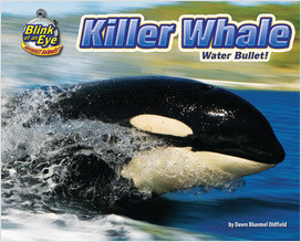 Cover: Killer Whale