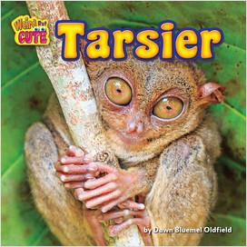 Cover: Tarsier