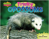 Cover: Tricky Opossums