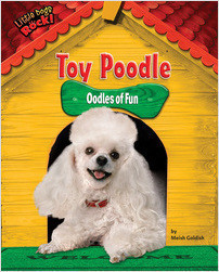Cover: Toy Poodle