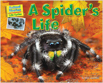 Cover: A Spider's Life