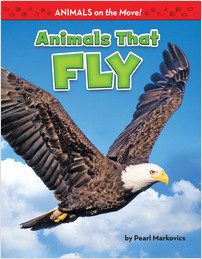 Cover: Animals That Fly