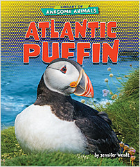 Cover: Atlantic Puffin
