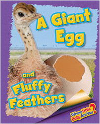 Cover: A Giant Egg and Fluffy Feathers (Ostrich)