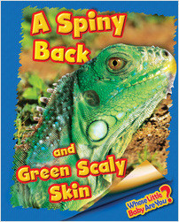 Cover: A Spiny Back and Green Scaly Skin (Iguana)