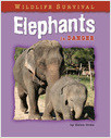 Cover: Elephants in Danger