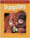 Cover: Orangutans in Danger