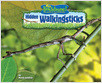 Cover: Hidden Walkingsticks