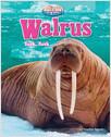Cover: Walrus