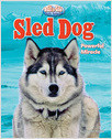 Cover: Sled Dog