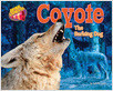 Cover: Coyote