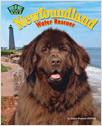 Cover: Newfoundland