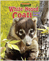 Cover: White-Nosed Coati