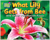 Cover: What Lily Gets from Bee