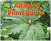 Cover: Amazing Plant Bodies
