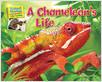 Cover: A Chameleon's Life