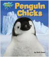 Cover: Penguin Chicks