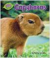 Cover: Capybaras